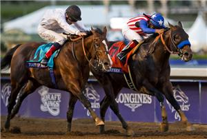 Bayern Lady Eli Top Woods 2014 Breeders Cup Successes